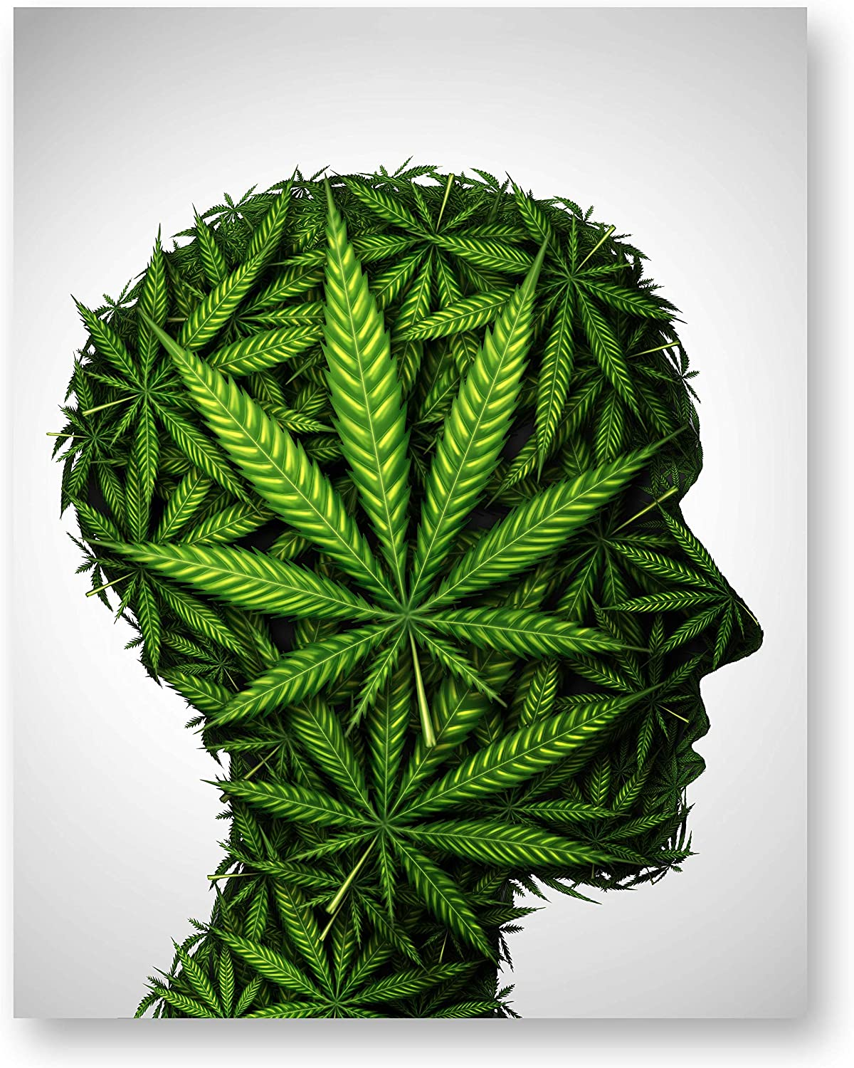 Pot Head Poster Print - (11 inches x 14 inches) Glossy Marijuana Cannabis Wall Art Decor