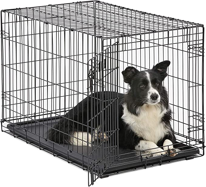 MidWest 36 Inch Folding Metal Dog Crate