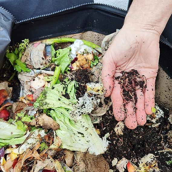 Urban Worm Bag - Vermicomposteur - Compostador de gusanos para ...