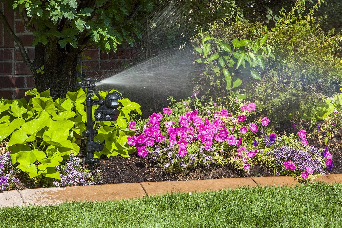 Orbit 62100 Yard Enforcer Motion-Activated Sprinkler with Day & Night Detection Modes Review