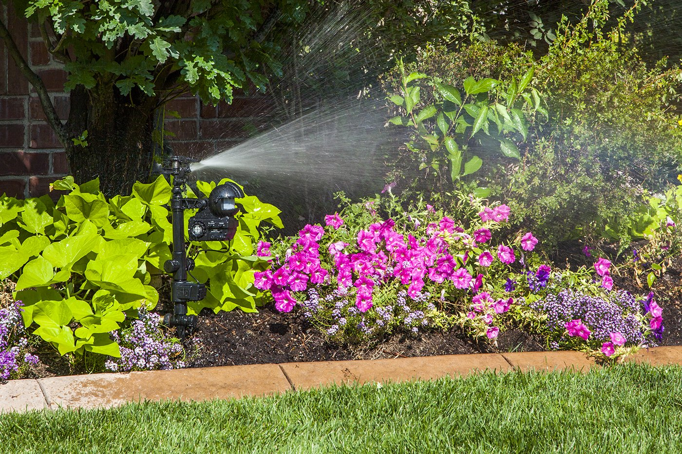 Marvelous Amazon.com : Orbit 62100 Yard Enforcer Motion Activated Sprinkler With Day  And Night Detection Modes : Lawn And Garden Sprinklers : Garden U0026 Outdoor