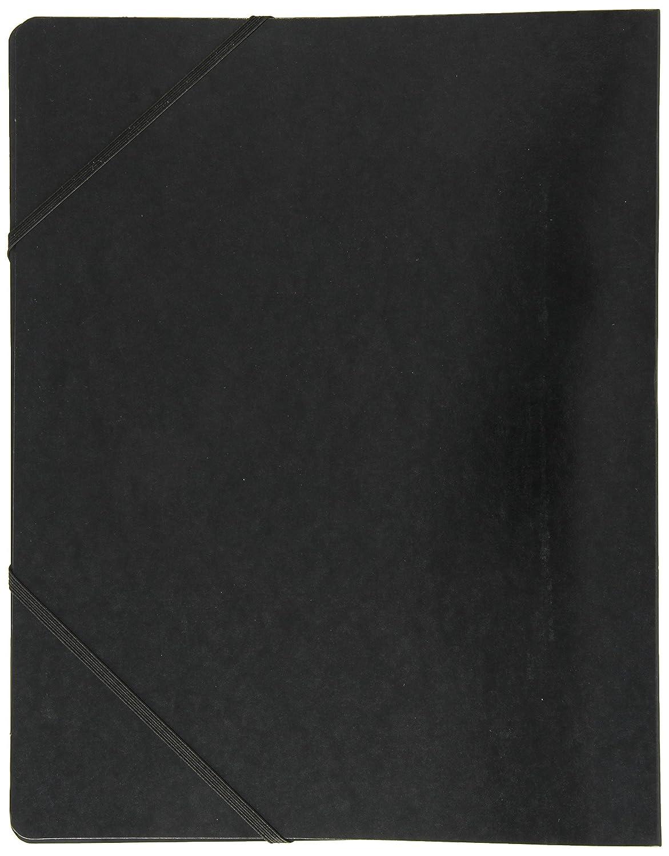 Exacompta 54891E - Carpeta (Conventional file folder, Caja de ...