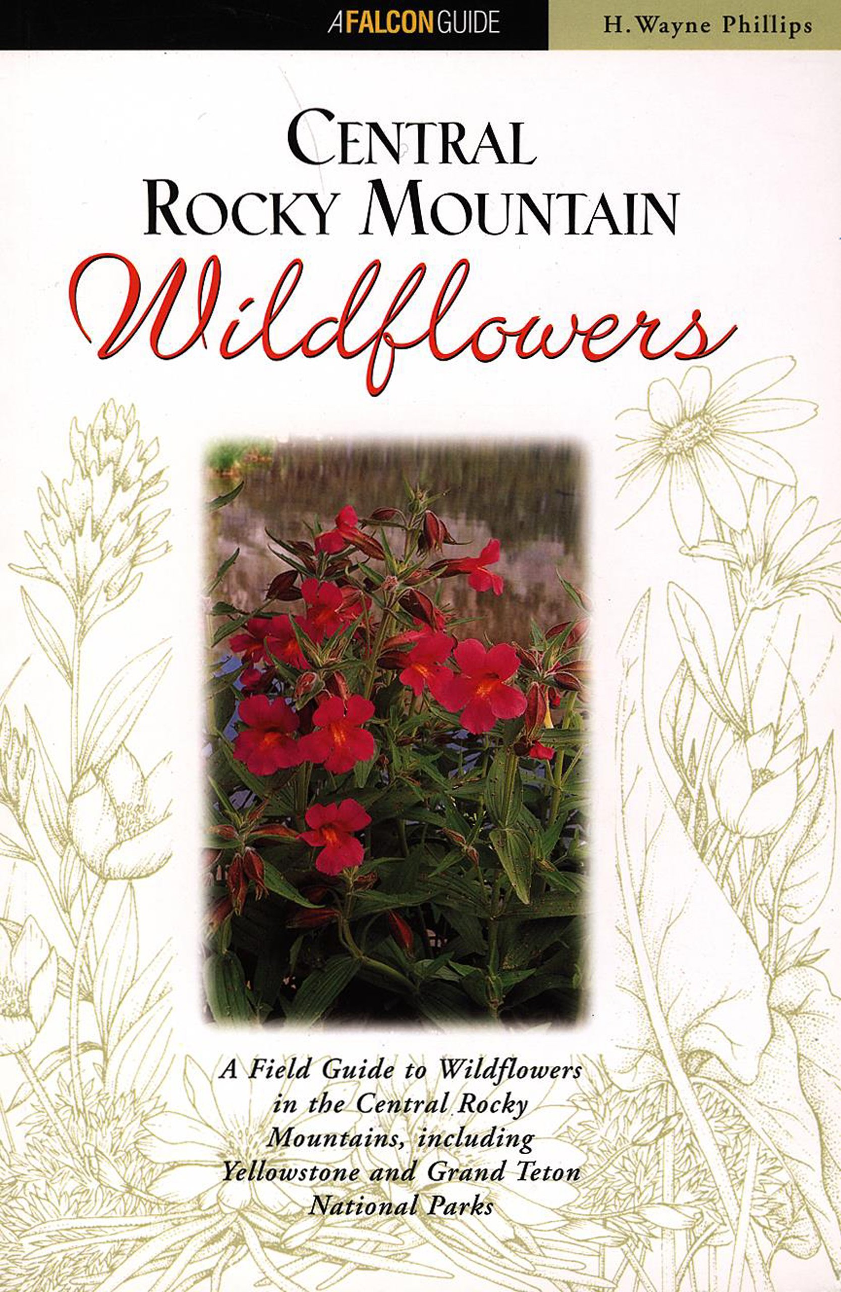 Central Rocky Mountain Wildflowers: Including Yellowstone and Grand ...