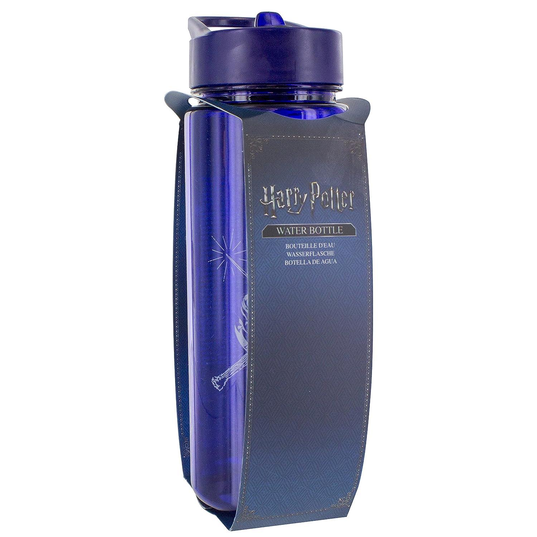 HARRY POTTER PP4540HP Botella Hogwarts, Adultos Unisex, 22 cm