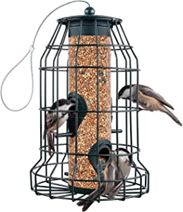 Squirrel Proof Bird Feeders 22 oz - Large Bird Feeder with 4 Perches. for Small Backyard Birds ONLY - Bird Feeder Squirrel Proof / Chew Proof / Rustproof. Fill with Wild Bird Seed for Outside Feeders