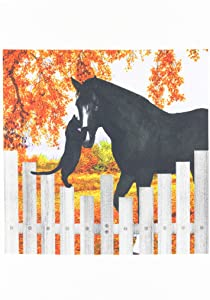 3dRose fl_150196_1 Precious Black Cat and Black Horse Sharing a Moment of Friendship Behind a Picket Fence in Autumn Garden Flag, 12 by 18-Inch