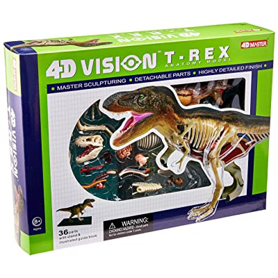 Famemaster 4D Vision T-Rex Anatomy Model: Toys & Games