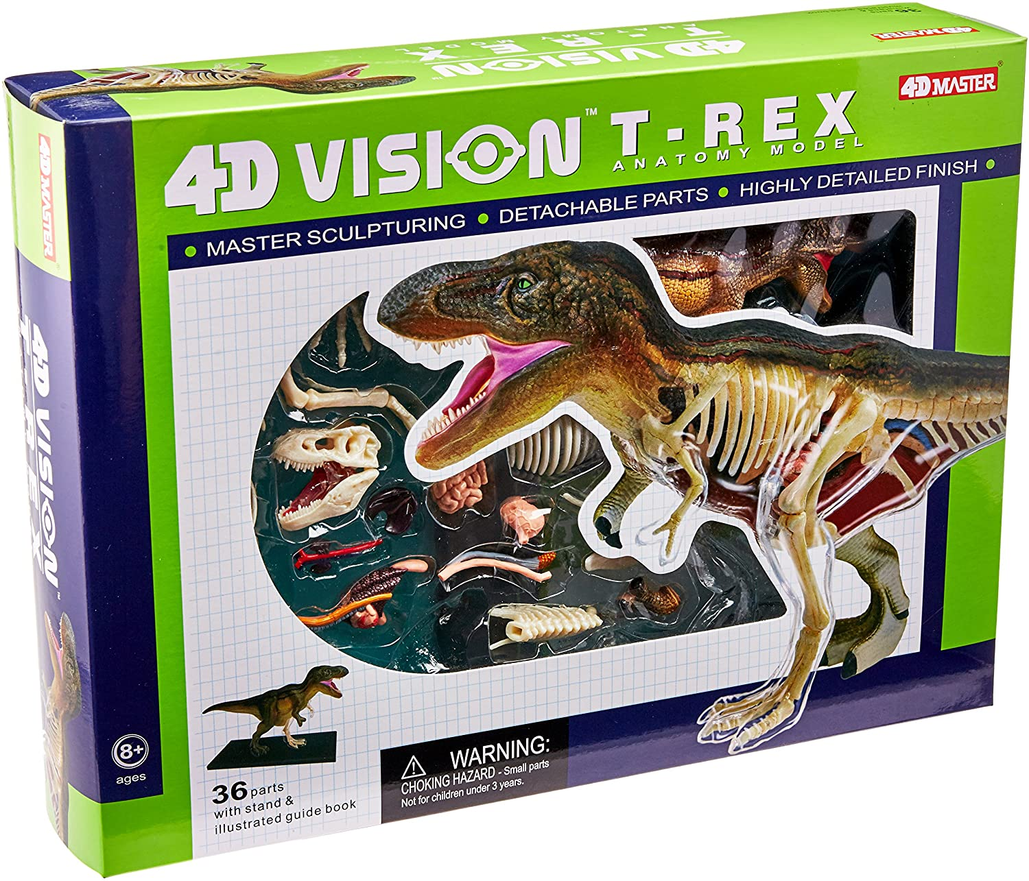 Famemaster 4D Vision T-Rex Anatomy Model