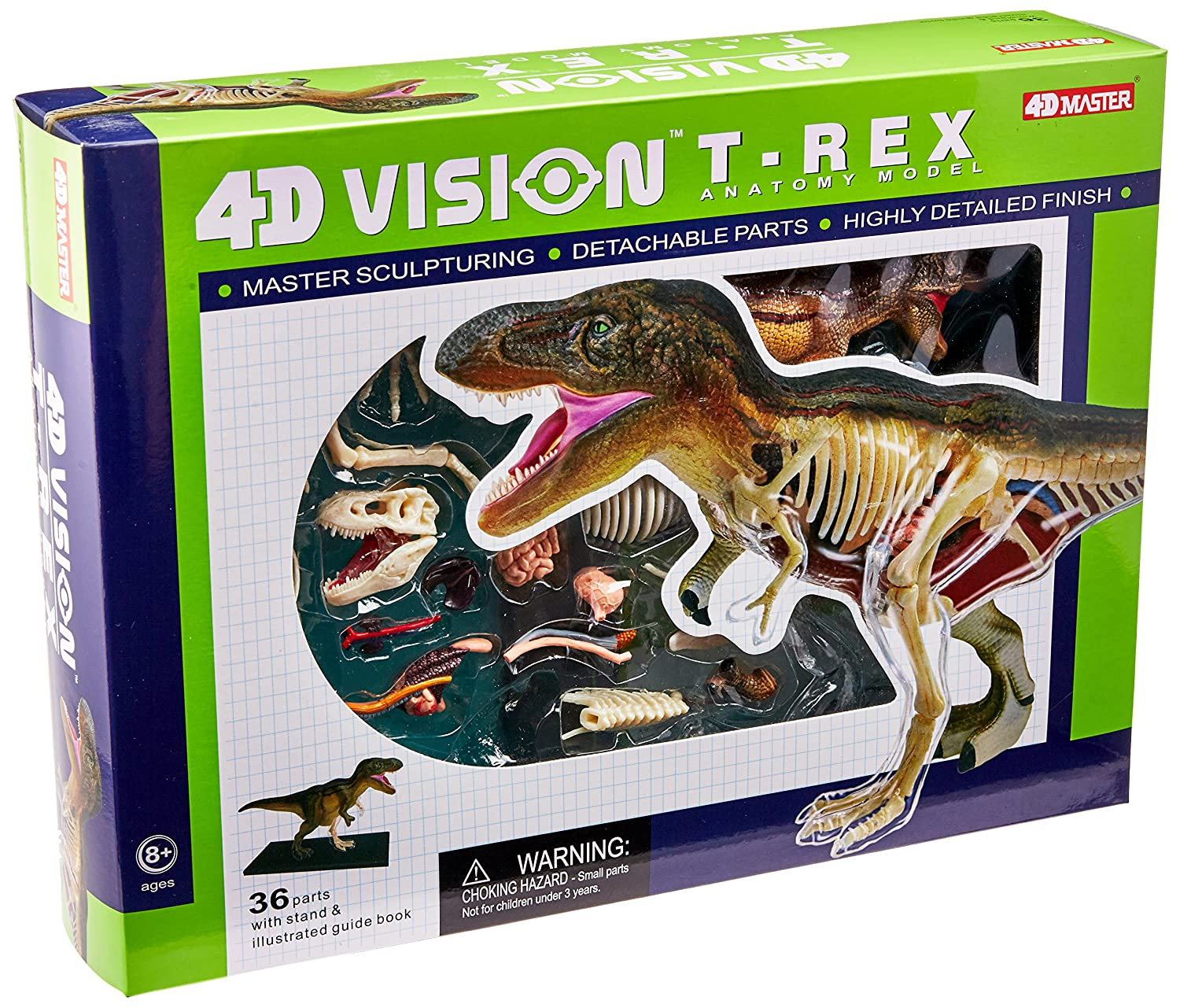 Amazon.com: Famemaster 4D Vision T-Rex Anatomy Model: Toys & Games