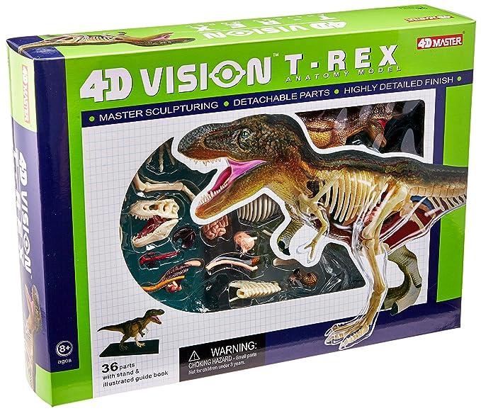Amazon.com: famemaster 4d Vision T-Rex Anatomía Modelo: Toys ...