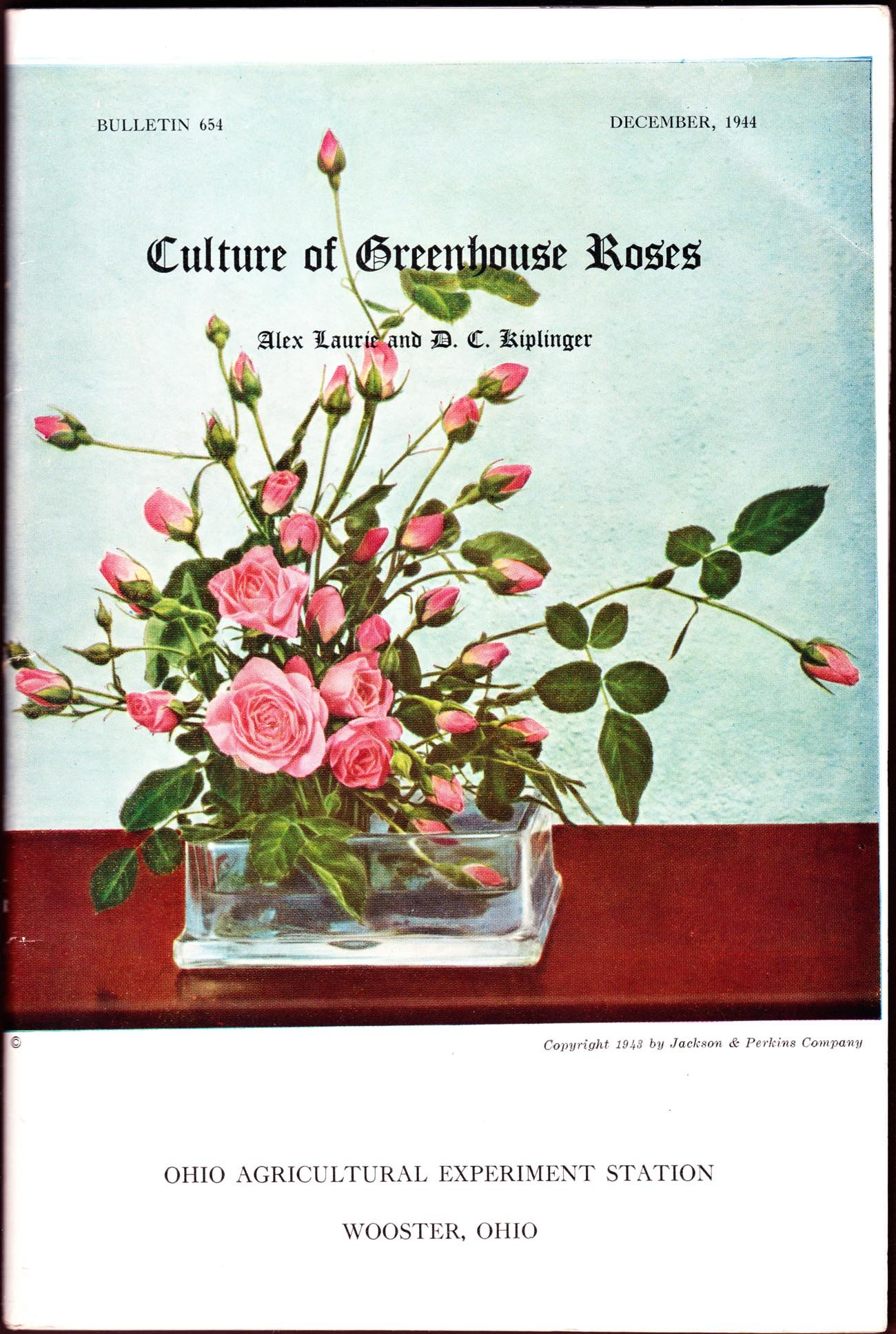 Culture of Greenhouse Roses (Bulletin 654 / Ohio Agricultural Experiment Station)