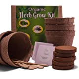 Organic 5 Herb Garden Seeds Starter Kit - Grow Cilantro, Parsley, Thyme, Sage and Basil Plant - Seedlicious gardening set includes everything a kitchen gardener needs for great indoor culinary herbs