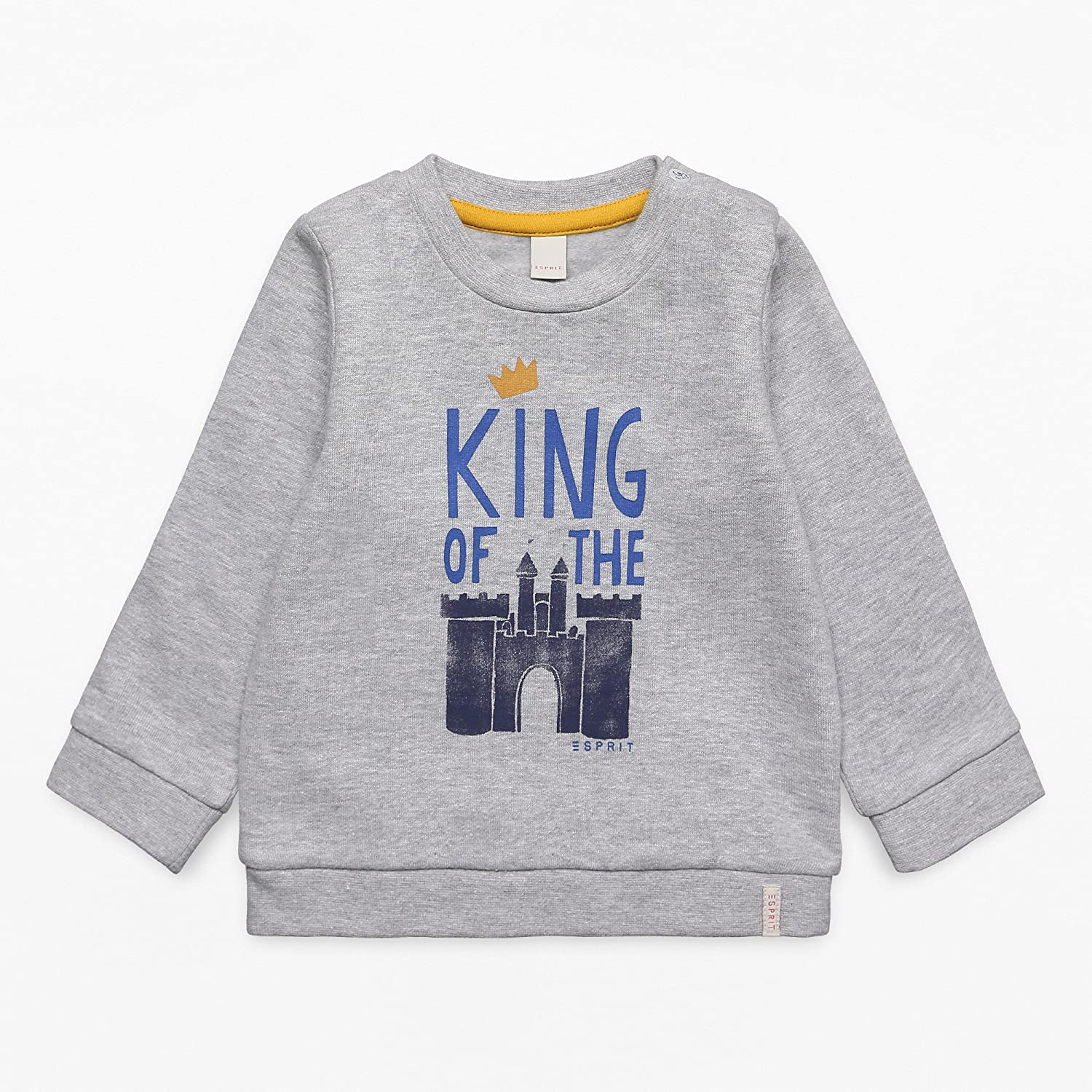 ESPRIT Baby Boys' Sweatshirt (Light Heather Grey 221) 6-9 Months RK15062