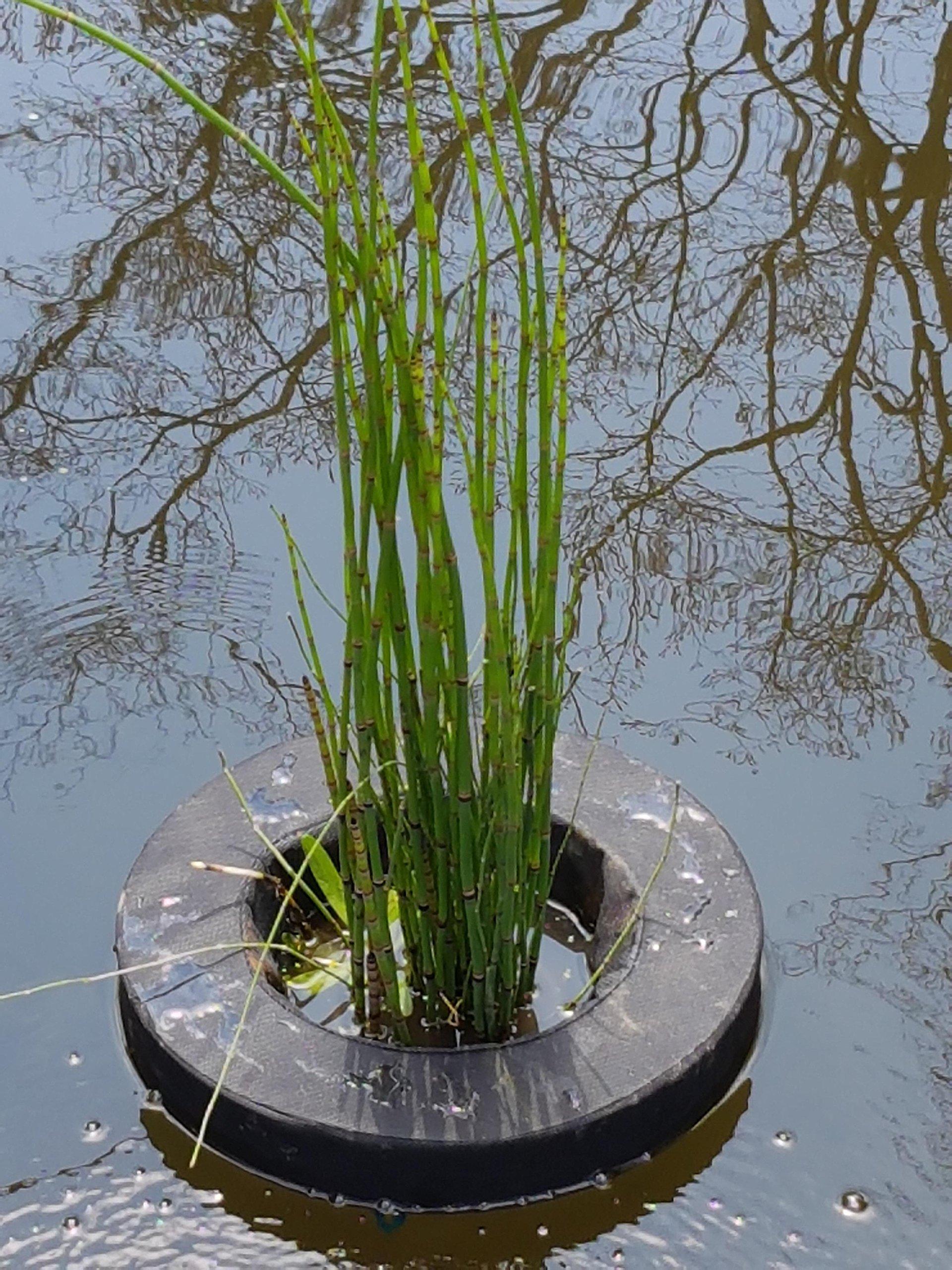 Velda Floating Fabric Pond Plant Basket, Round 14 Inch (36cm), Floating Pond Island