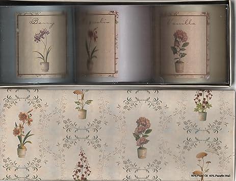 Amazon.com : Fabrice de Villeneuve Candles, Box of Three: Vanilla ...