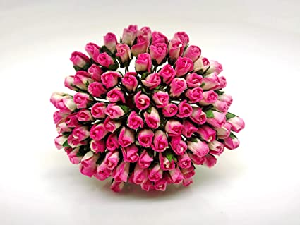 Amazon Com Tyga Thai Brand 100 Pcs White Hot Pink Color Rose Buds