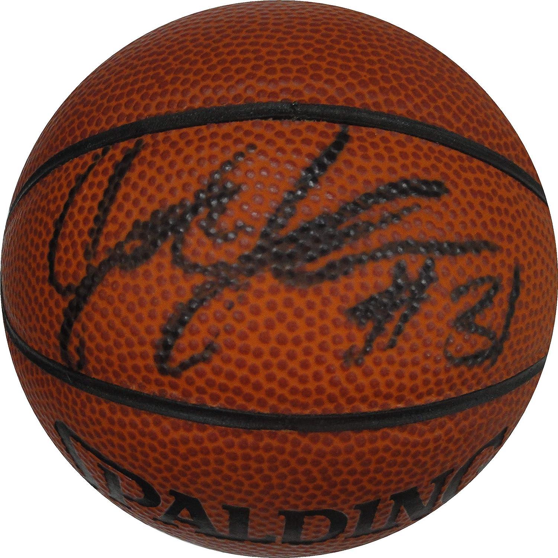 Joe Johnson Hand Signed Autographed Mini Basketball Boston Celtics Heat