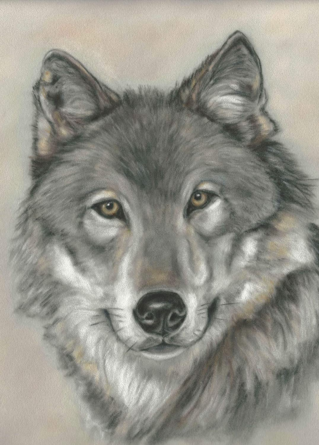 Wolf art wolf print of original wolf painting by Tracey Earl size A5 unframed. wolf artwork wolf picture