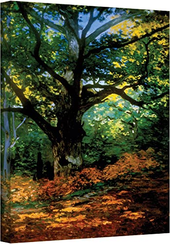 Editors' Choice: Art Wall Bodmer Oak at Fontainebleau Forest Gallery Wrapped Canvas Art