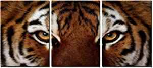 Natural art – Ferocity Tiger with Eye Staring Wall Art Painting Pictures Print On Canvas Animal The Picture for Home Modern Decoration