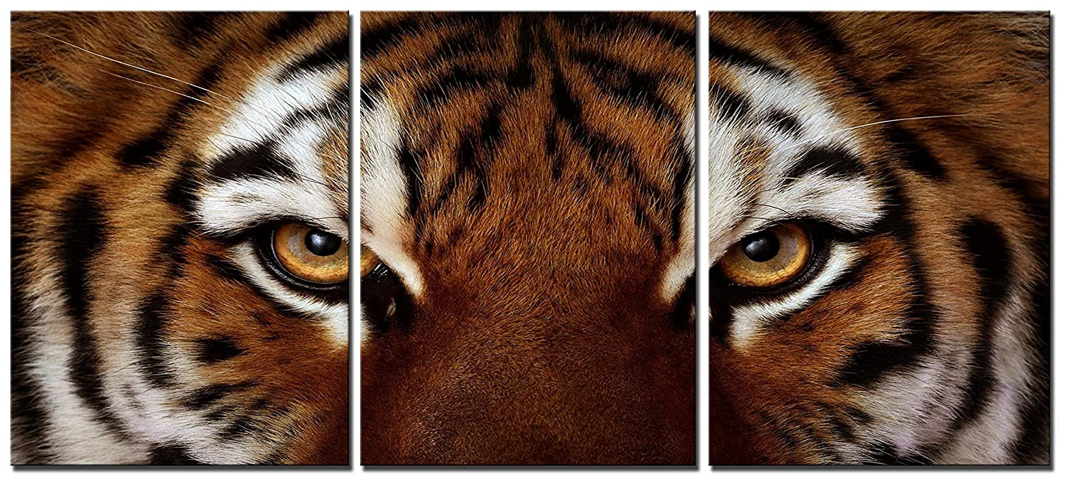 Amazon com natural art ferocity tiger with eye staring wall art painting pictures print on canvas animal the picture for home modern decoration posters