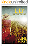 Lily of the Fields