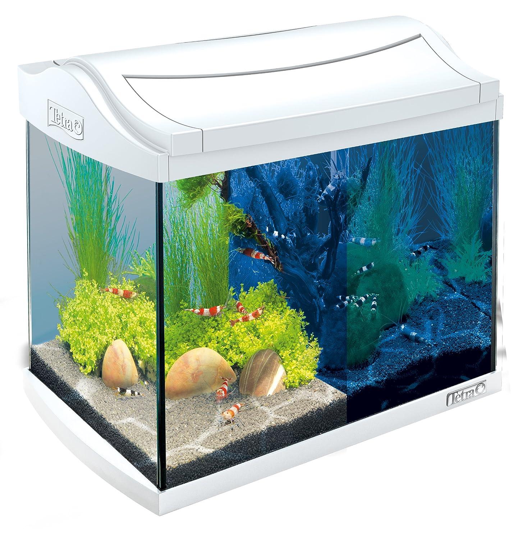 Tetra AquaArt Discovery Line LED Aquarium-Komplett-Set weiß (inklusive LED-Beleuchtung, Tag- und Nachtlichtschaltung, Innenfilter und Aquarienpumpe, ideal für Garnelen) 60 L weiß 244900