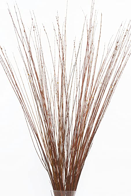 Amazon Green Floral Crafts 4 5 Ft Tall Burnt Oak Asian Willow