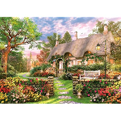 1000 Piece Jigsaw Puzzle for Adults, Puzzle for Adults 1000 Piece, Art Painting Jigsaw Puzzle for Landscape Pattern: Toys & Games