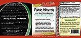 Fulvic Minerals - 32 Fl. Oz. - One Month Supply