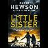 Little Sister: Detective Pieter Vos 03