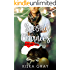 Second Chances (Sheltered Hearts Book 1)