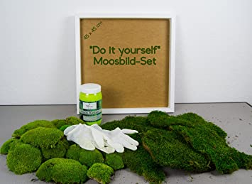 Wunderbar Moos Design DIY Moosbld Selber Machen, Wandbilder Selber Kleben, 100%  Kugelmoos