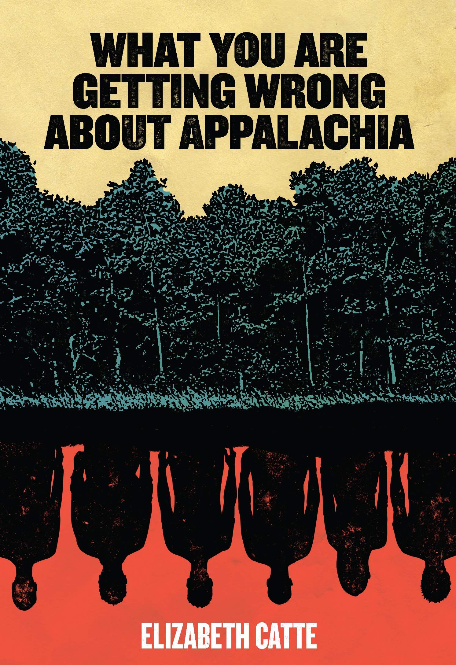 Image result for what you are getting wrong about appalachia