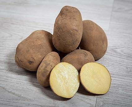 13 kg. Patata Agria/Especial para Freir - Selección Gourmet