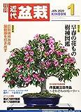 月刊近代盆栽 2020年 01 月号 [雑誌]
