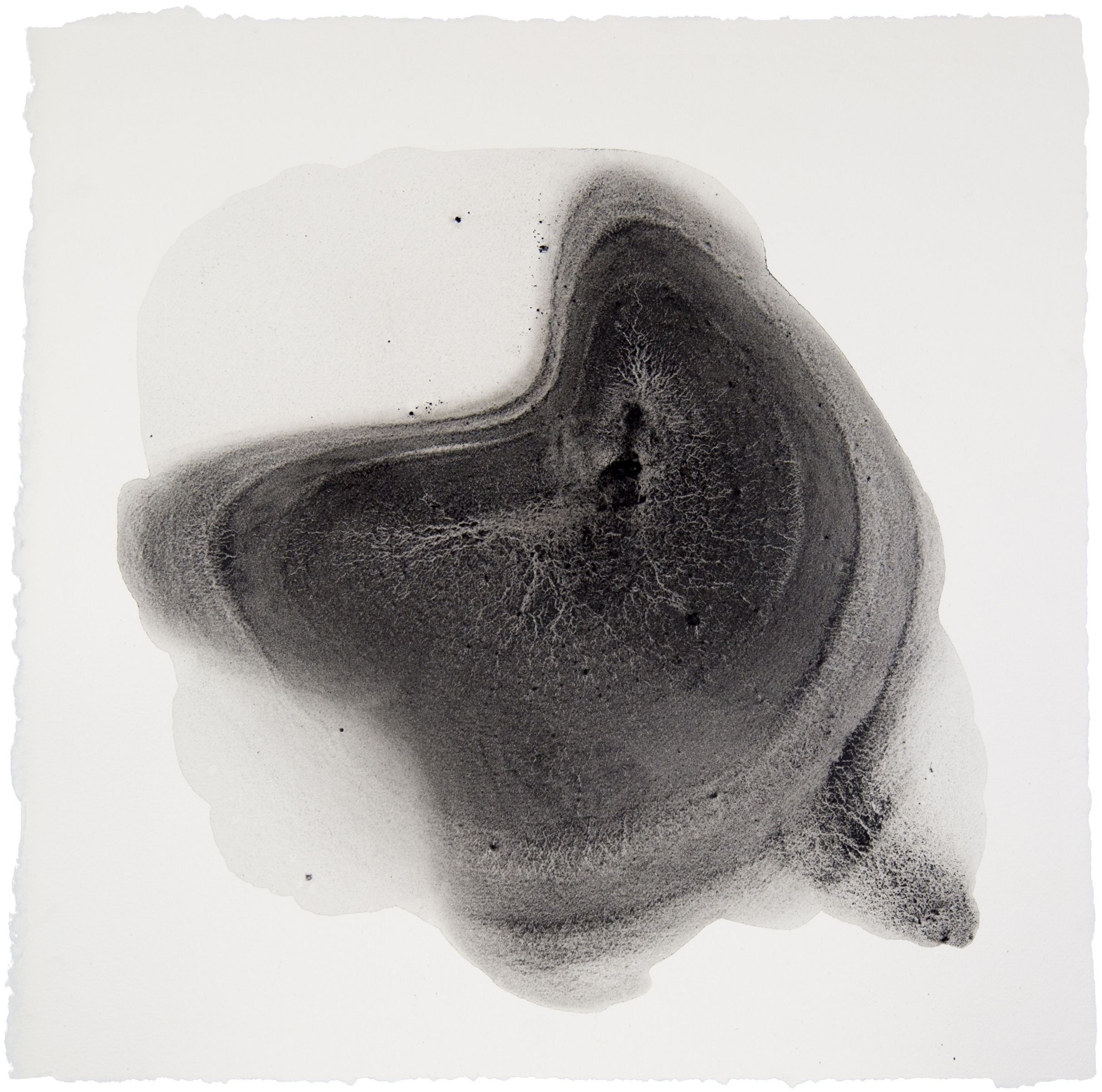 Sediment #9 by