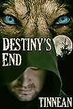 Destiny's End (Strange, Strange World Book 1)