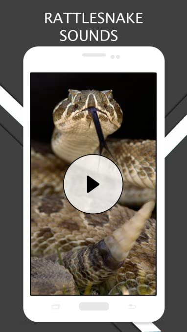 Amazon com: Rattlesnake Sounds And Ringtones: Appstore for Android