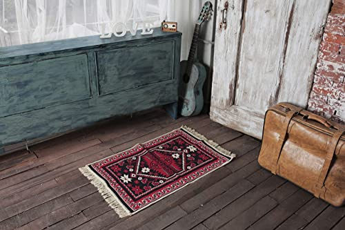 SETA RUGS, Blaundus Collection Area Rugs, Small Rug, Decorative Kilim, Double Sided Cotton Washable Rug for entryway, Hallway, Kitchen, 2 x 3 ft