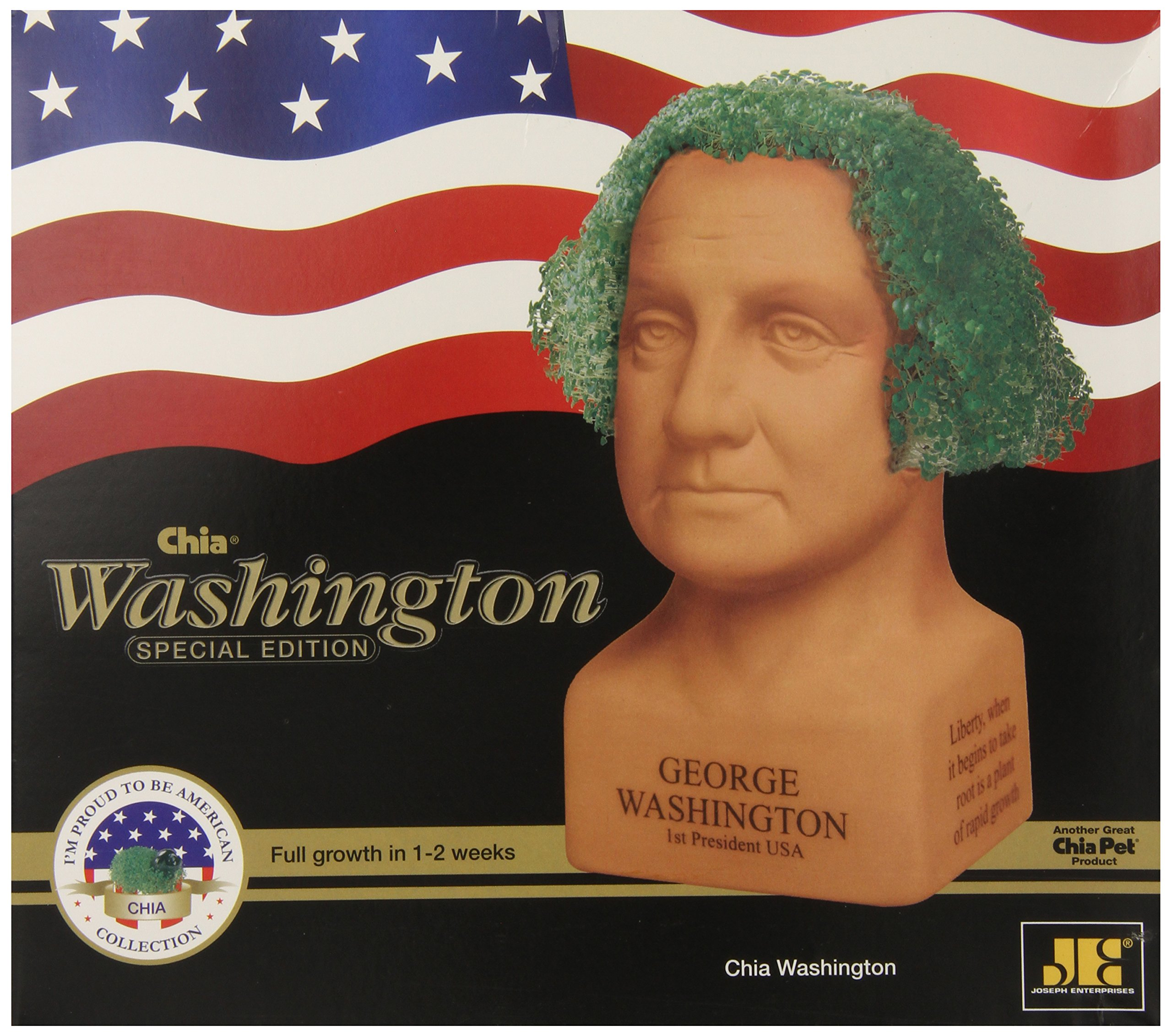 Chia Pet George Washington, Decorative Pottery Planter, Freedom of Choice, Easy To Do and Fun To Grow, Novelty Gift, Perfect For Any Occasion