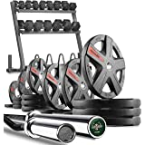 XMark Powerhouse 2 Dumbbell Rack and Plate Weight Rack Loaded with 350 lbs. of Hex