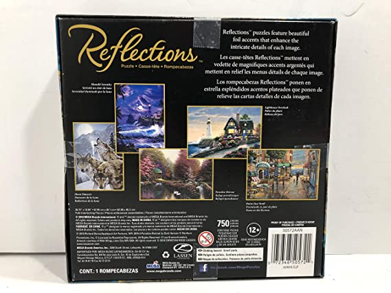 Amazon.com: Reflections Puzzle Rainy Day Stroll 750 Piece Puzzle: Toys & Games
