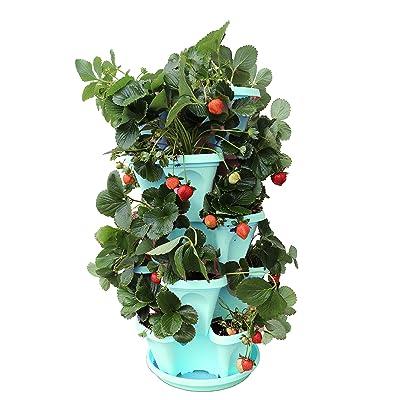 Vertical Gardening Planter (Tiffany Blue) : Garden & Outdoor