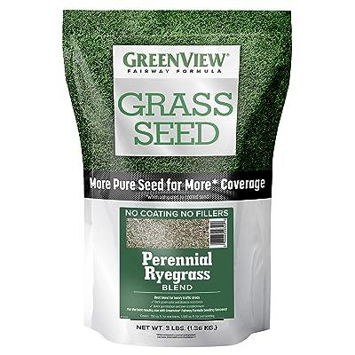GreenView 2829353 Fairway Formula Grass Seed Perennial Ryegrass Blend, 3 lb: Garden & Outdoor