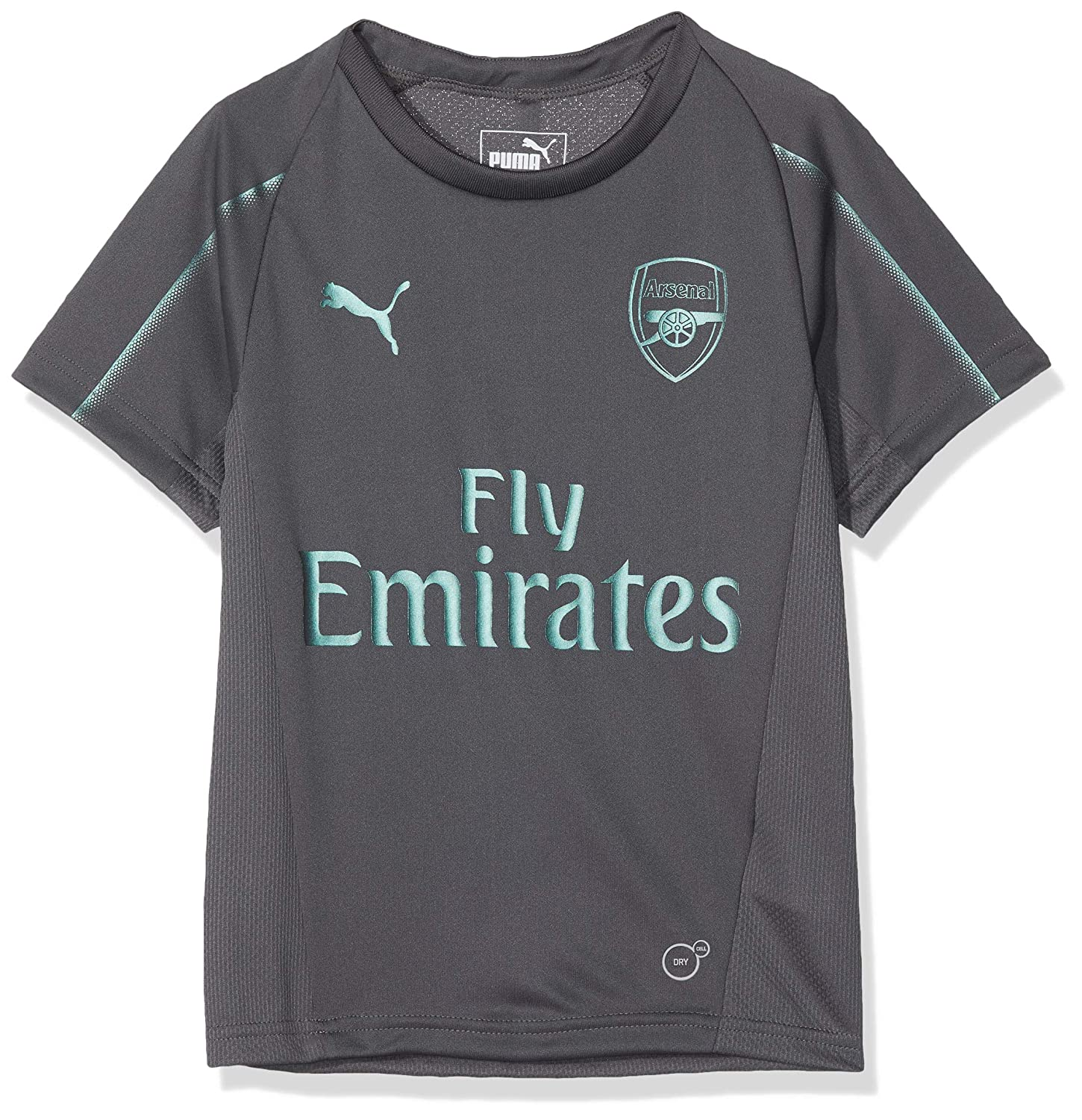 Puma Children's Arsenal Fc Training Jersey Ss Kids with EPL Sponsor Logo T-Shirt 753267