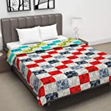 Divine Casa Floral Abstract Microfibre Reversible Double A/C Dohar/Blanket - Green and Red