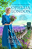 Never an Amish Bride (Honey Brook Book 1)