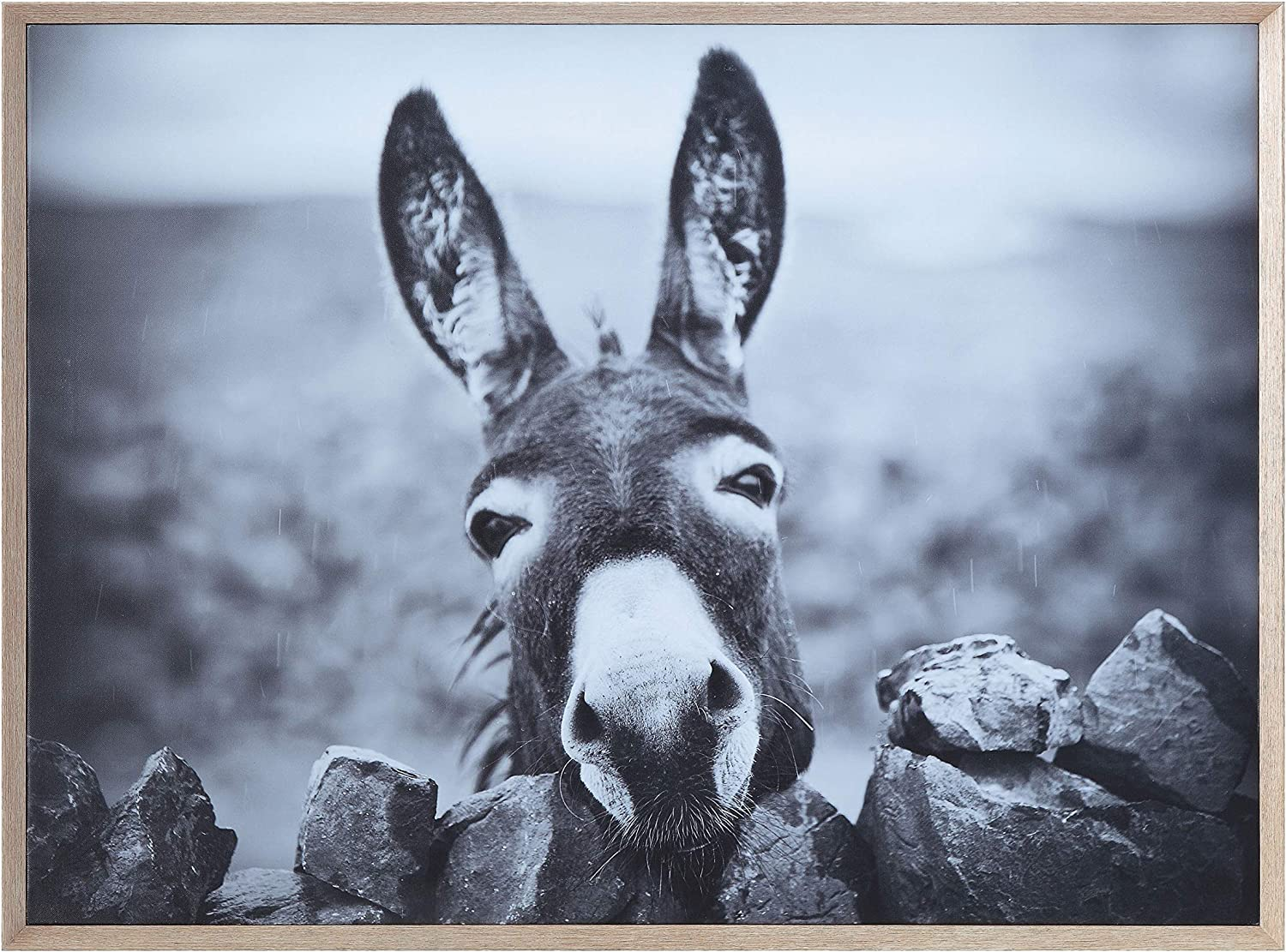 Creative Co-op Black & White Donkey on Canvas Framed Wall Décor, Black