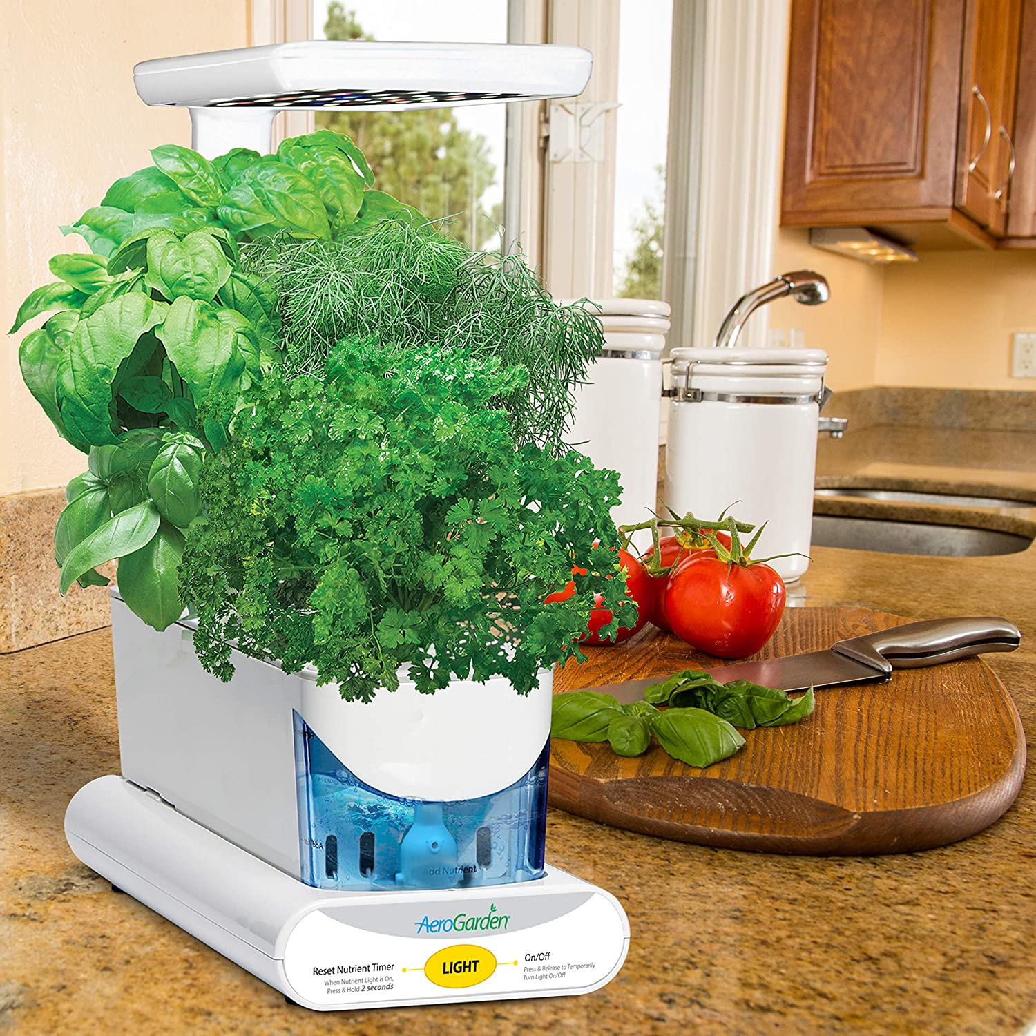 grow-everything-with-aerogarden-sprouts